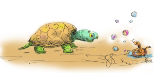 terraturtle-color